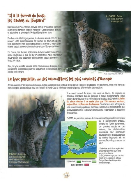 BD Toupoil [I]Mes trois lynx[/I]