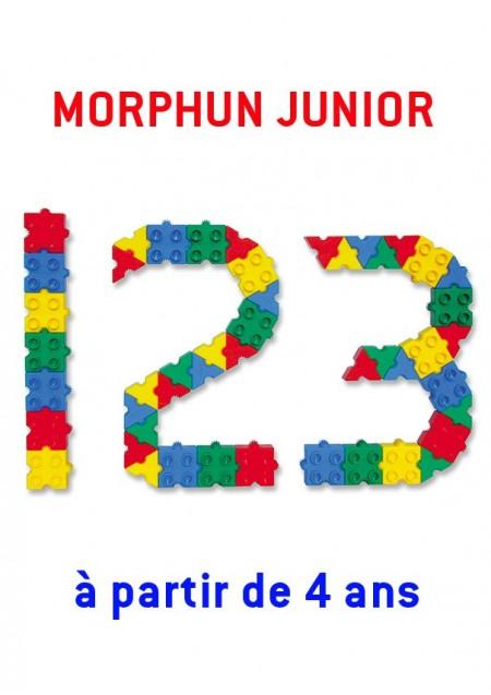 Morphun Junior : 300 briques