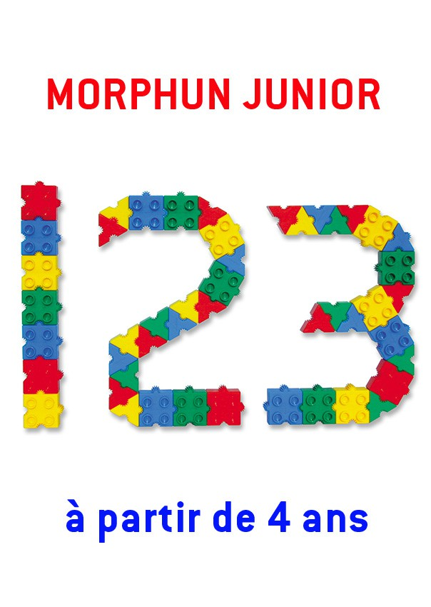 Morphun Junior : 300 briques + guide