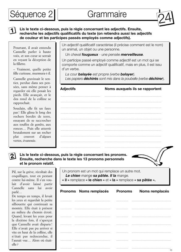 Le français par le roman : Cannelle et le lutin